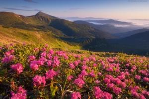 Самый привлекательный туристический регион Украины